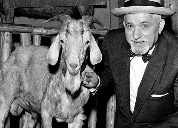 Billy Goat Curse